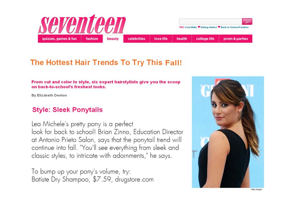 seventeen 8.jpg