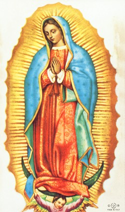 Image result for lady of guadalupe