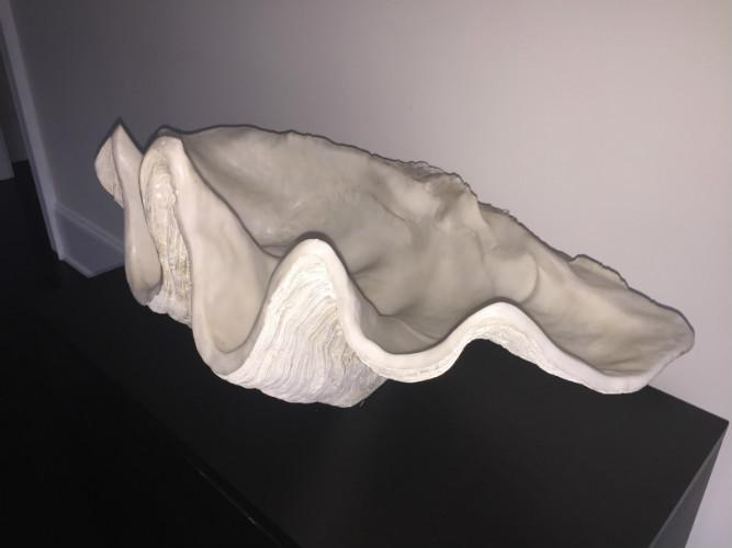 RESIN LARGE CLAM SHELL