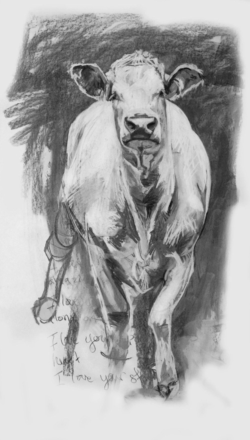 Stuart, Charcoal on Paper, 60x42 inches, 2009