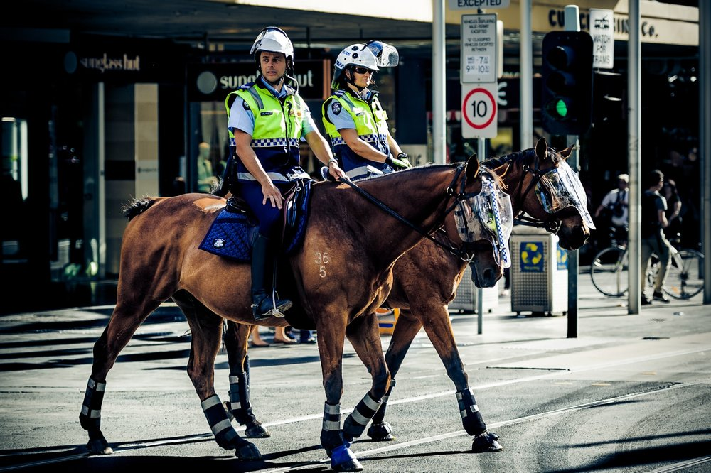 Horseback in the city