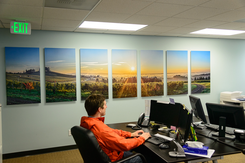 The finished product: Red Hills Acquisitions' Office with 161 x 43 inch Panoramic Merger Print split in 7 panels with onOne's Perfect Resize: archival mounting on solid core Sintra, and coated with Premiere Art Shield UV and water sealant.
