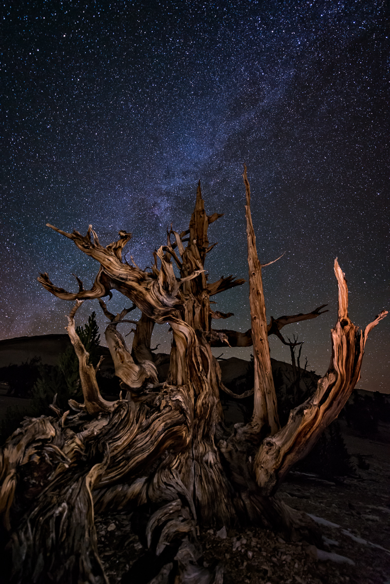 Milky Way over Bristlecone: Technical Details:   Nikon D800, Nikkor 14-24 at f2.8 for 25 seconds at 4000 ISO