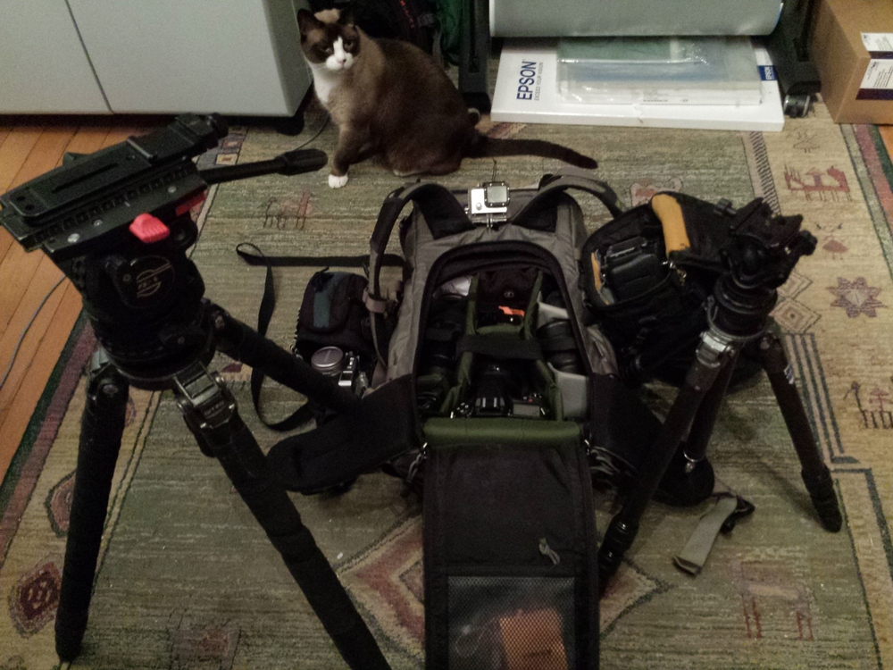 My gear back in 2014. *Karl the Cat not included.