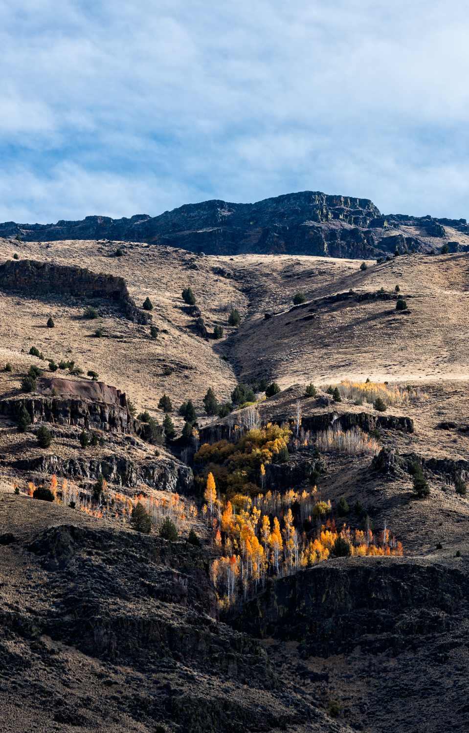 Fall Fire on Heart Mountain. Nikon D810 (Click Image to Enlarge)