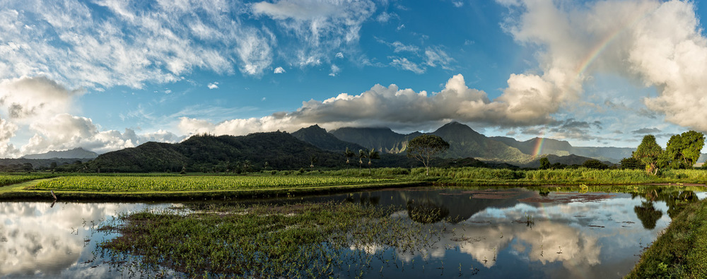 Kauai's Hanalei Valley. Nikon D800 Ultra hi rez Panoramic Merger