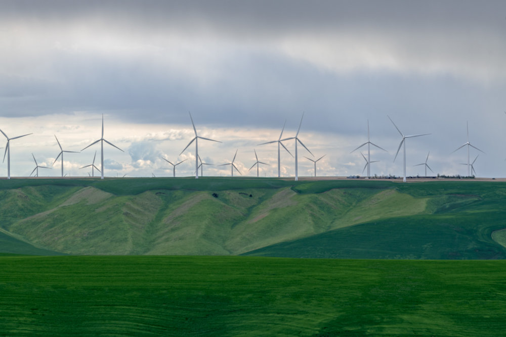 20180510_D850_Palouse_0043-Edit.jpg
