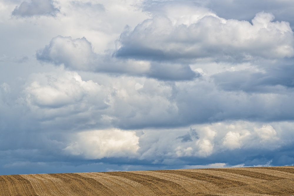 20180510_D850_Palouse_0040-Edit.jpg