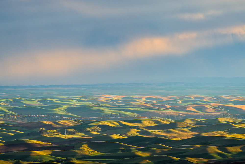 20180510_D850_Palouse_0095-Edit.jpg