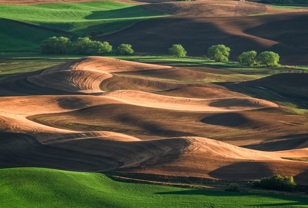 20180510_D850_Palouse_0103-Edit.jpg