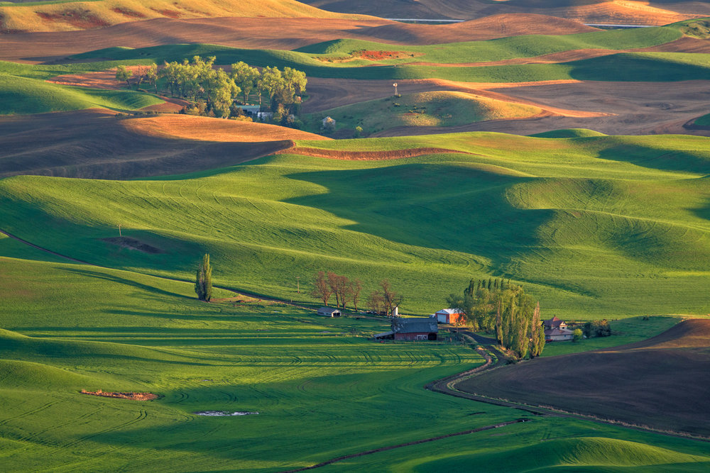 20180510_D850_Palouse_0109-Edit.jpg