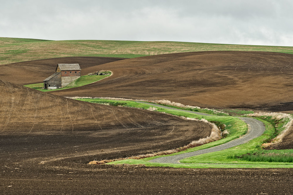 20180511_D850_Palouse_0186-Edit.jpg