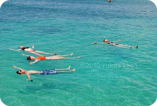 floating and swimming in the caribbean sea
