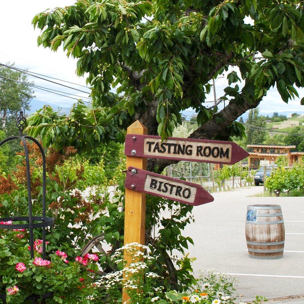 Hillside+Winery+in+Okanagan+on+Ashleyfisher.jpg