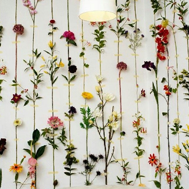 Beautiful wall of flowers. #cbmood