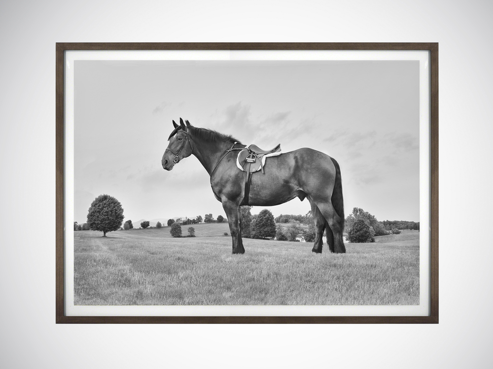 Gelatin silver black & white print
