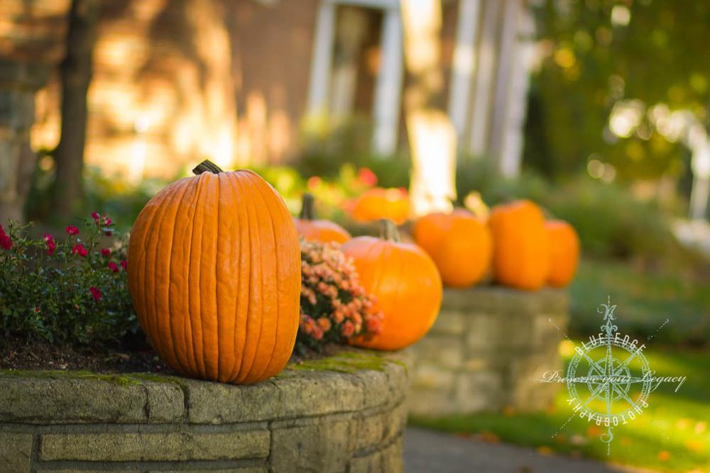 Fall In Traverse