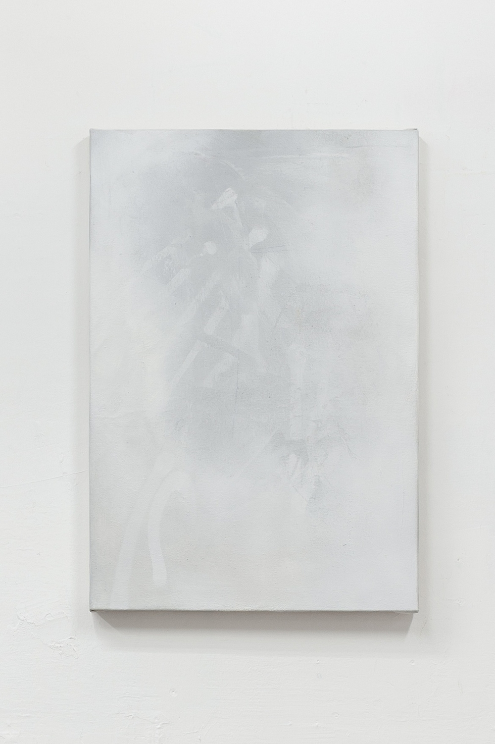 X-RAY PAINTING, 2012   pencil and spray paint on canvas, 65x45cm