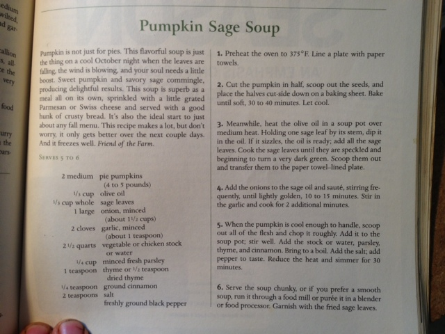 ...or this photo for a nice pumpkin soup. Though you'll need to cut the recipe nearly in half...