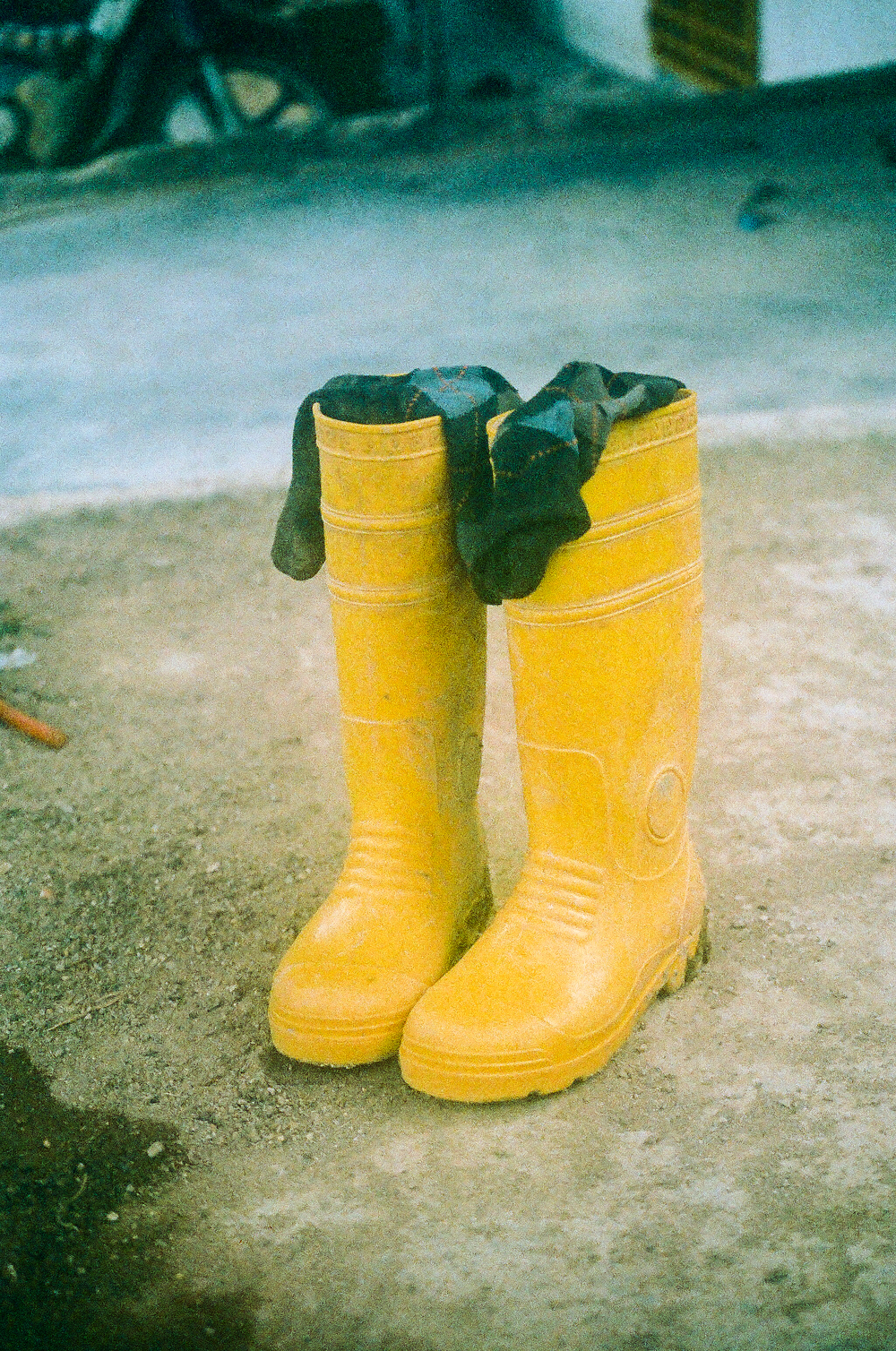 Asia Film Cameron Highlands Farm Boots.jpg