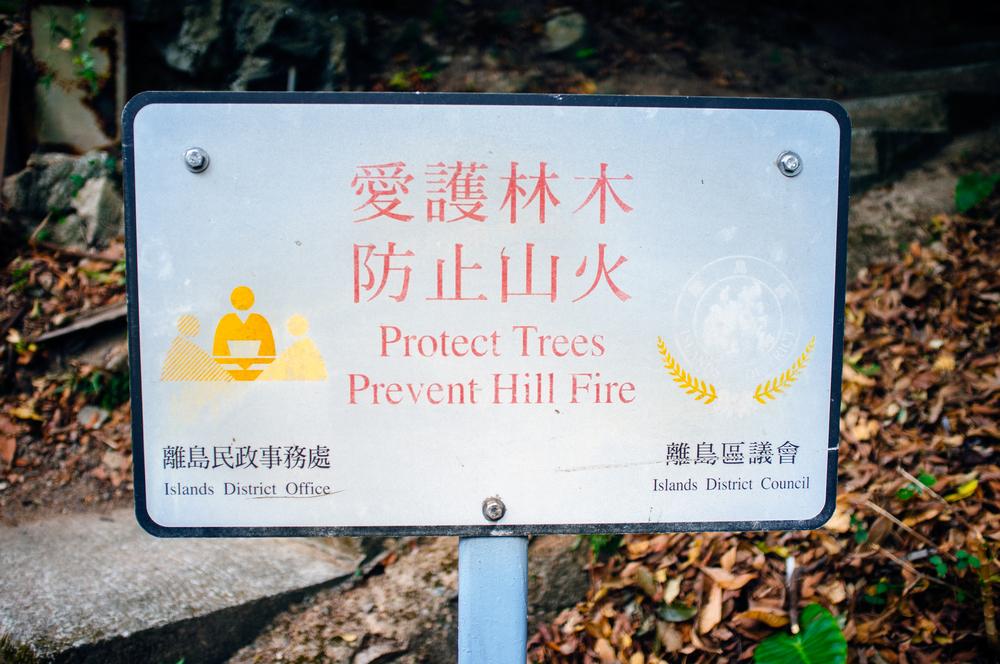 Peng Chau Protect Trees.jpg
