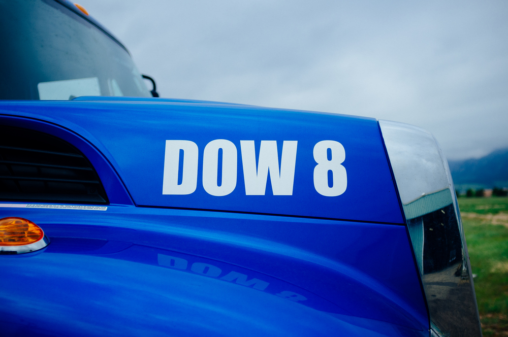 CSWR DOW 8.jpg