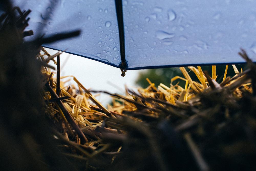 Blue Umbrella 3.jpg