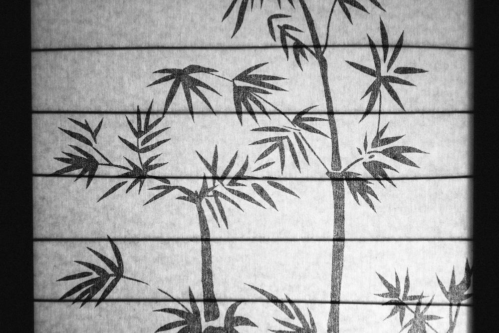 Dustin Palm Light.jpg