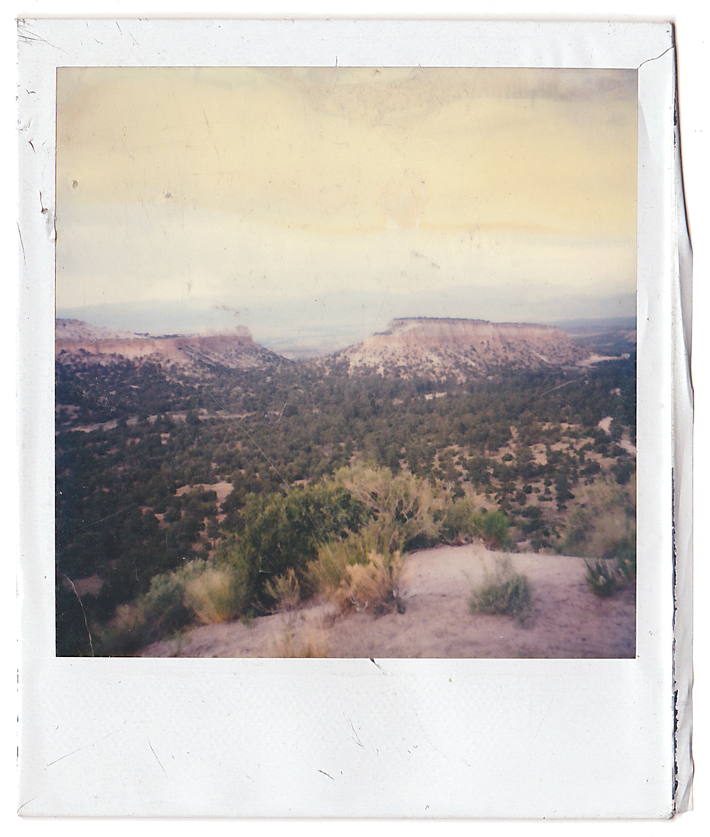 Found Polaroid 3.jpg