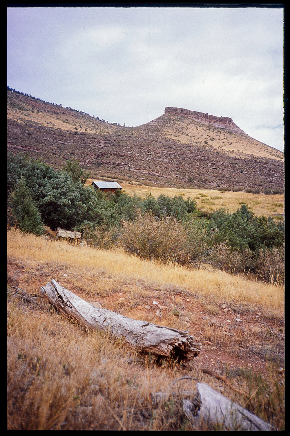 Olympus XA - Provia - Hall Ranch.jpg