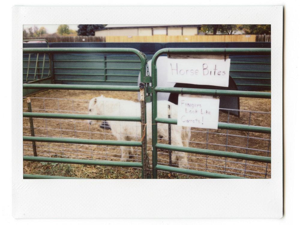 Instax Horse Bites.jpg