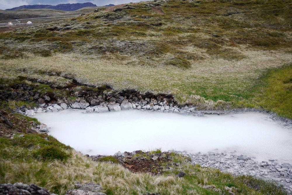 White Pool.jpg