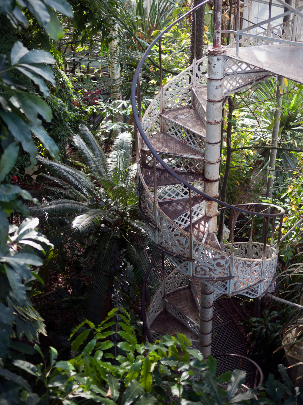 StaircaseJungle.jpg