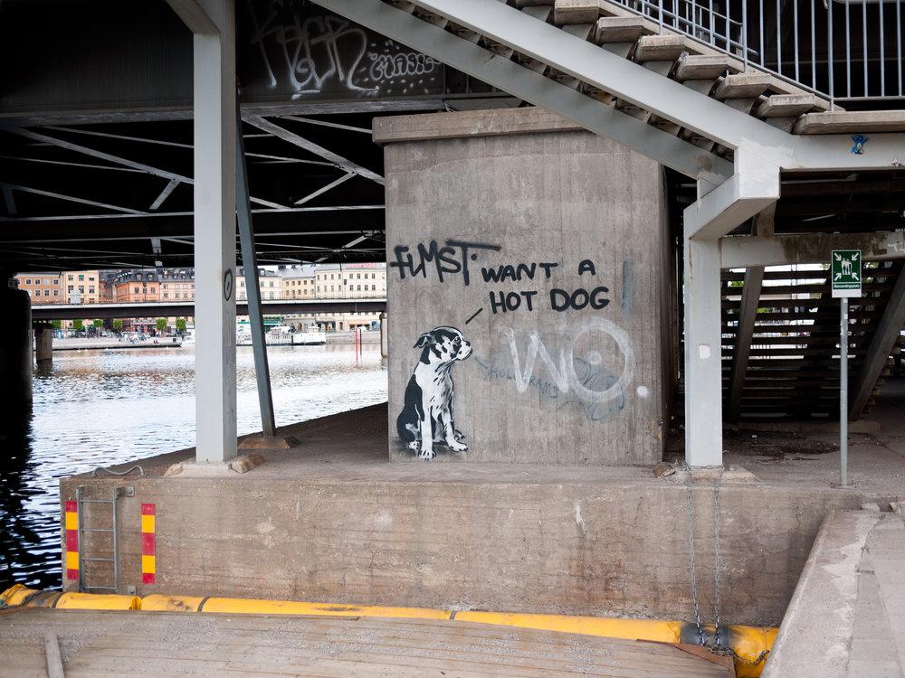 Dog Grafitti.jpg