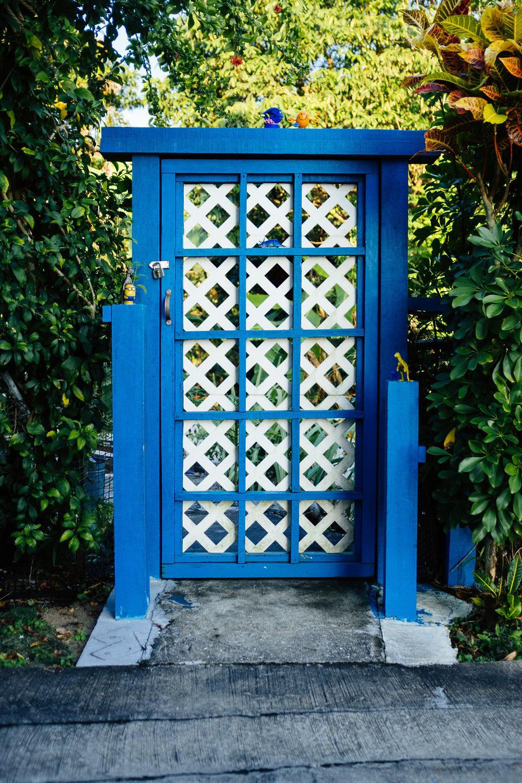 Lamma Door.jpg