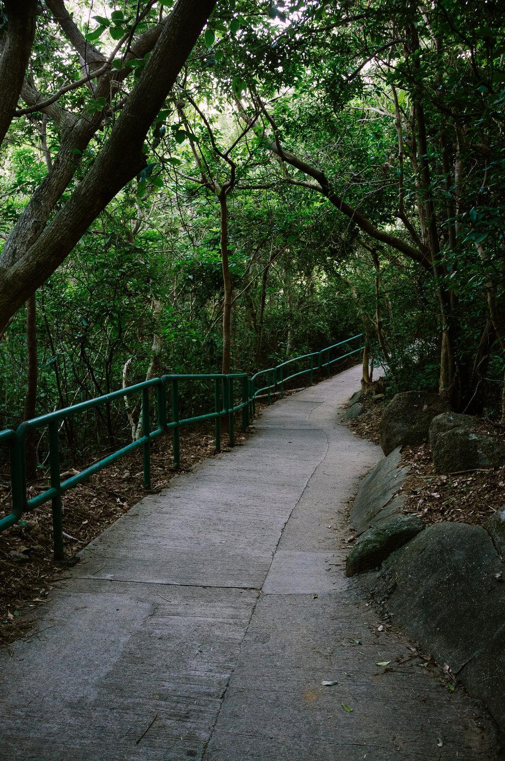 Lamma Trail.jpg