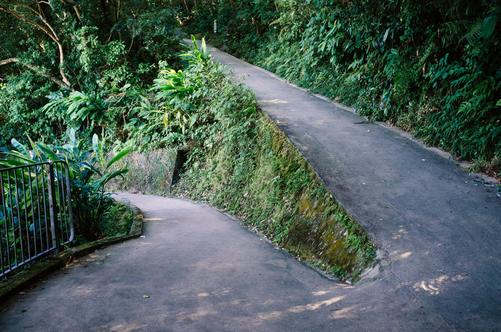 Victoria Peak Path 2.jpg