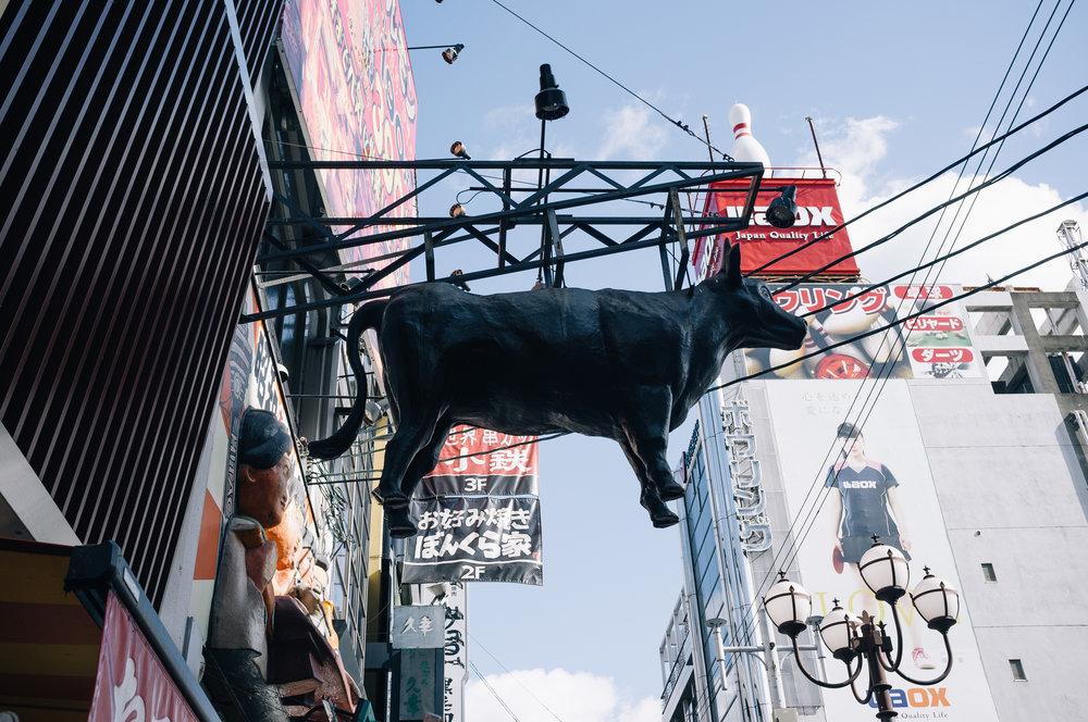Osaka Cow 2.jpg