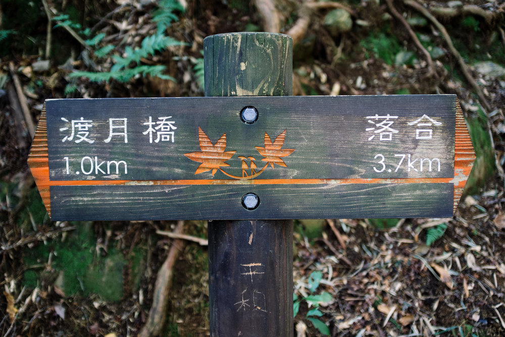 Kyoto Arashiyama 11.jpg