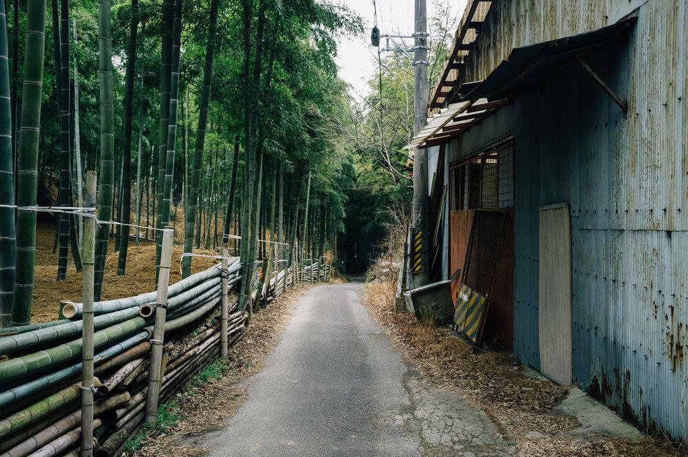Inari 15.jpg