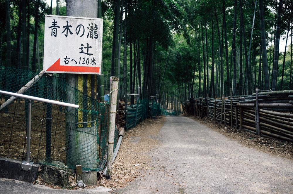 Inari 14.jpg