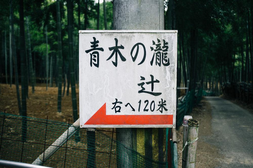 Inari 19.jpg