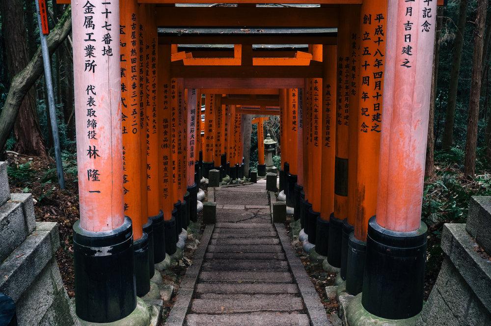 Inari 61.jpg
