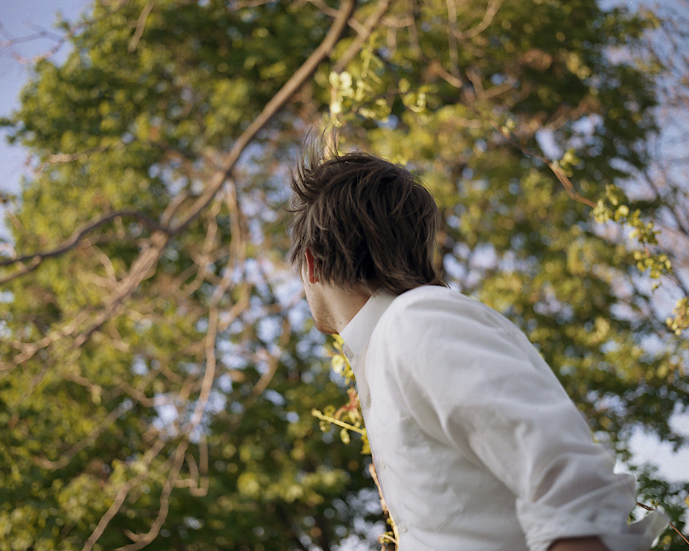 Trees, 2007
