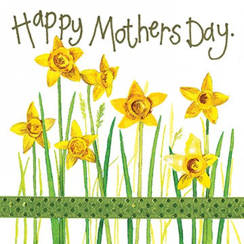 mothers-day-daffodils-500x500.jpg