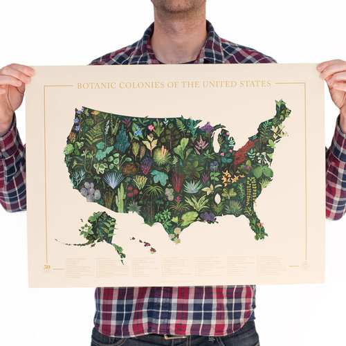 Botanic Colonies Of The Us Print Familytree - Print-us-map