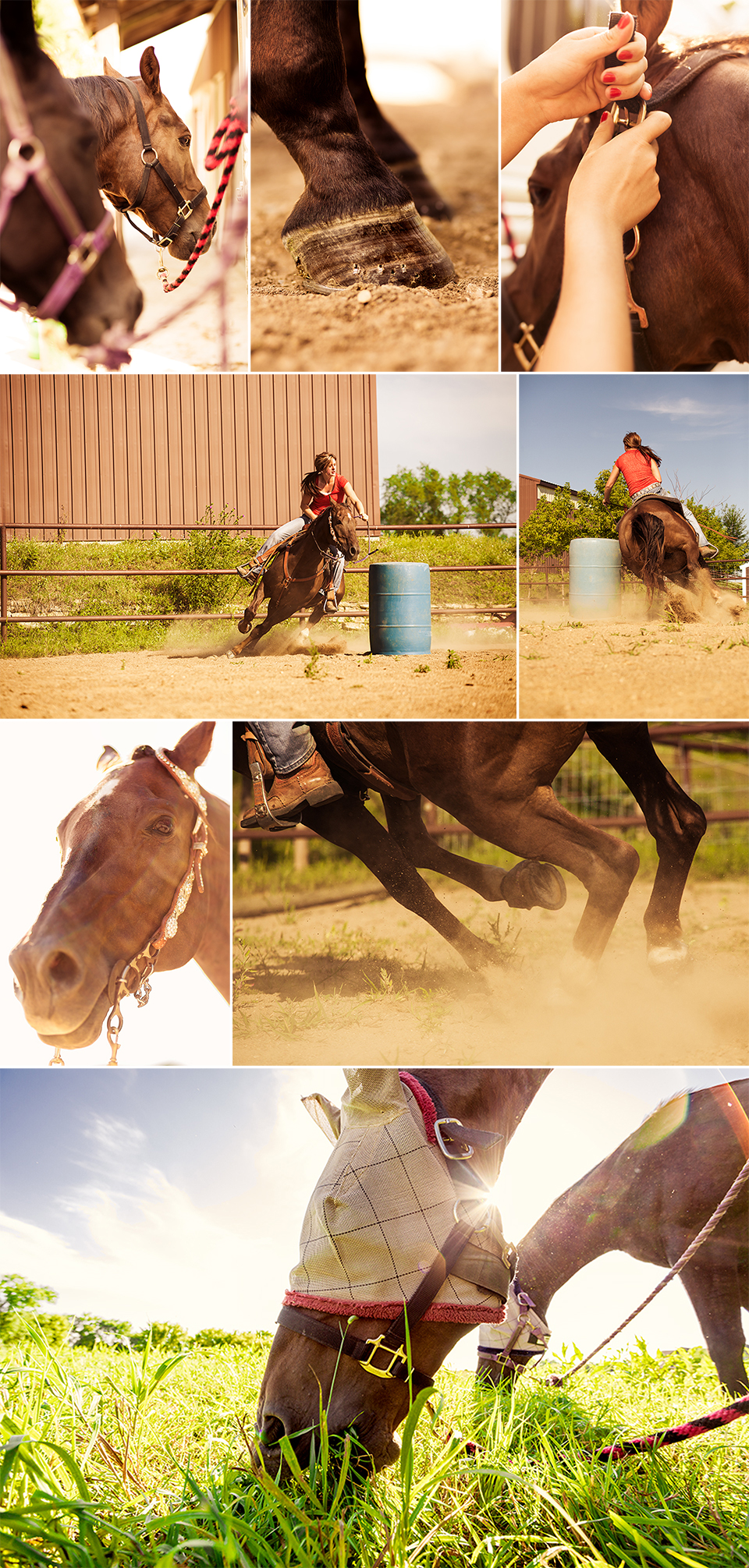 Barrel_Racing_Blog.jpg