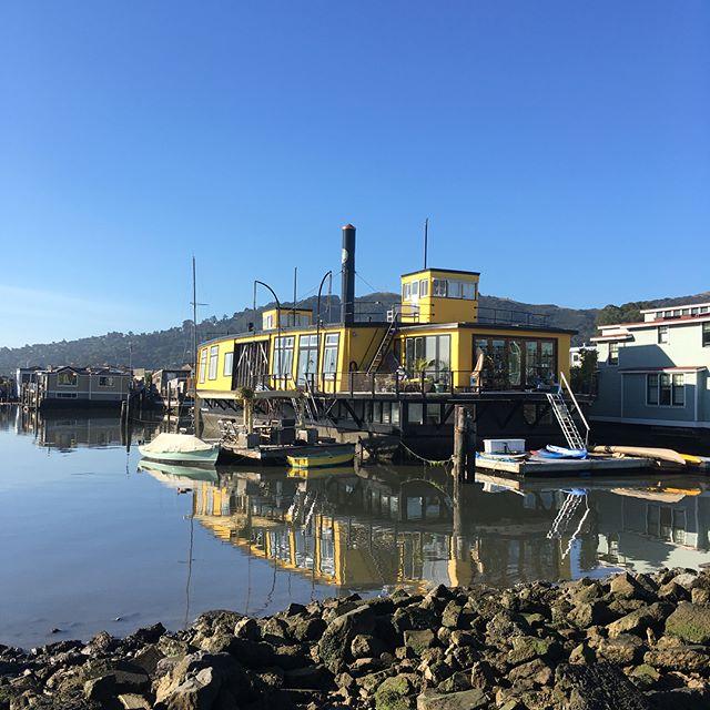 The Yellow Ferry 💛 ⛴ #sausalito #homeawayfromhome  #vikingspirit @catalinayachts