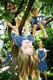 sharron kids climbing trees