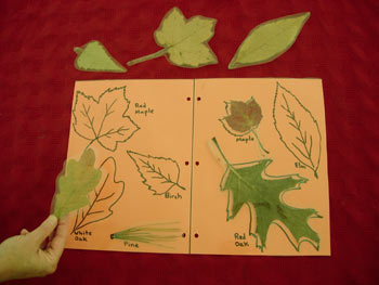 leafmatching